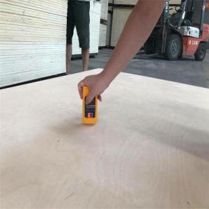 [هيغقوليتي] مع [كمبتيتيف بريس] من [أكووم] خشب رقائقيّ تجاريّة لأنّ أثاث لازم