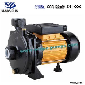 Elektrische zentrifugale Wasser-Pumpe Fujian-Mindong Xinyuan