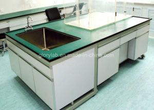 PPの流しが付いている化学抵抗力がある実験室の家具