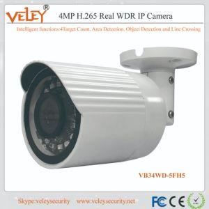 Cámara IP de Hikvision precio mini cámara de infrarrojos de la cámara de vídeo 1080p