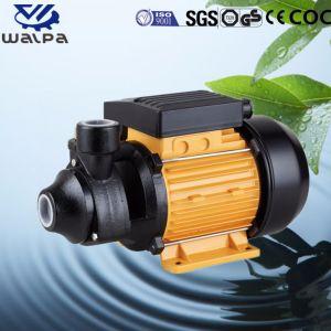 Turbulenz-Pumpe mit Messingantreiber der Qb Serie 0.5HP