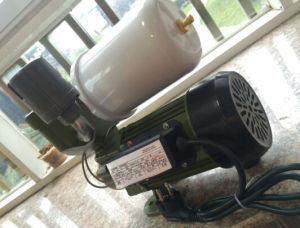Wedo 1awzb750 Self-Priming automatique de la pompe à eau électrique