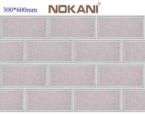 表面仕上げBrick TileおよびGraniteまたはMarble Looked Porcelain/Ceramic Wall Tile