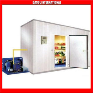 Trastero/Cámaras Frigoríficas modulares carne/sala de almacenamiento en congelador.