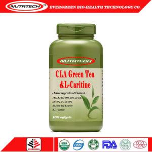 La pérdida de peso el té verde cla L-Carnitina Softgel con etiqueta privada