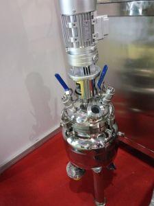 中国SGSの公認の生物的および化学リアクター