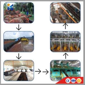 2018 de Hete Machine van de Verwerking van de Palmolie van de Verkoop met Sterilisator, Dorser, de Machine van de Pers