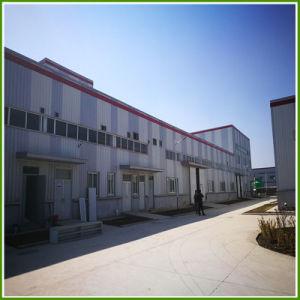 مصنع إمداد تموين قصب جذمور مقتطف مسحوق