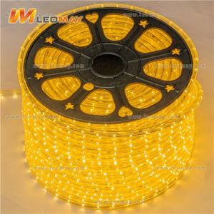 220V 5050 strisce della flessione LED