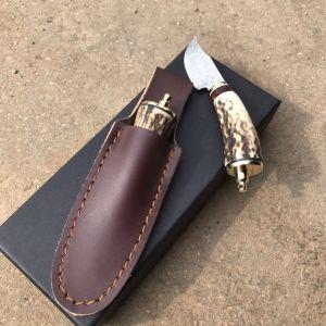 Pocket Cuchilla de acero de Damasco con mango de Buckhorn pequeña Cuchilla recta