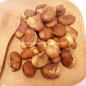 Gesunde Imbisse salzten Saubohnen/Fava Bohnen kein Farbton