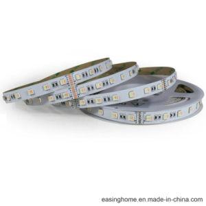 Corde lumière 5050SMD 120 Degré Beam Angle RGB+W+WW (RGB+TDC) 60LED Haute luminosité/M Bande LED pour LED feux néon souple Flex