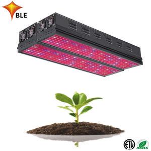 Amplio espectro de luz LED de crecer para la Agricultura Proyecto 600W de potencia real del panel de crecer
