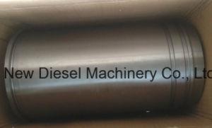 Diesel des Motor-Mtu396 zerteilt Zylinder-Zwischenlage (5550111610)