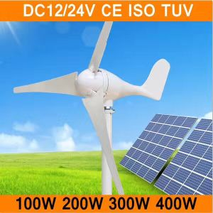Tipo S 200W 12V/24V Pequeno Jardim Decoration Windmill (SHJ-200S)