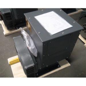 Jinlong doppelte Peilung-schwanzloser Drehstromgenerator