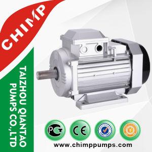 Series Aluminum Housing氏の高性能の誘導電動機