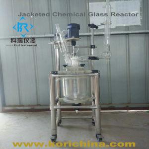 5L de Fles van de Reactie van het laboratorium met de Beklede Reactor van de Pyrolyse van het Glas
