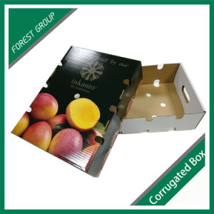 Reforço do papel barato Frutas Caixa de transporte