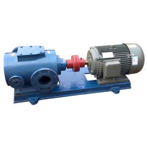 Pompe à vis en acier inoxydable, SS, SS304 de la pompe à vis de la pompe à vis