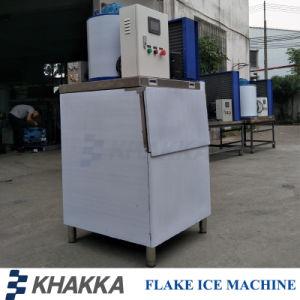 La production de glace 300kg par jour pour les fruits de mer