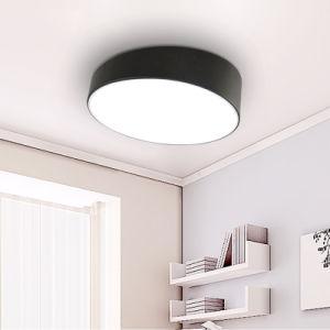 Redonda de aluminio de alta potencia LED montados en la superficie de la luz de techo