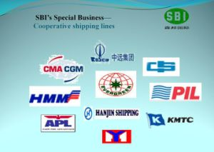 Shanghai à l'Organisation mondiale de la logistique/ Services d'expédition/Europe