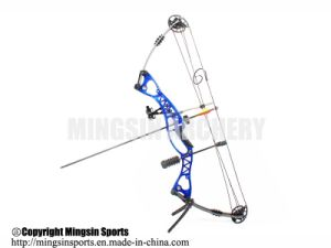競争のための専門家M106の混合物の弓