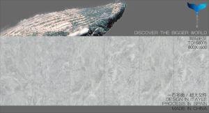 800X1600mm de Marmeren Tegel van de Vloer voor Gang -168003