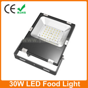 Proyector LED 30W