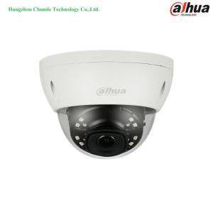 2MP H. 265 Camera van het Netwerk van Suveillance van de Koepel van IRL de Mini (ipc-hdbw4231e-ASE)