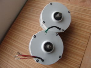 300W 24V AC低いRpm永久マグネット発電機の交流発電機(SHJ-300M)