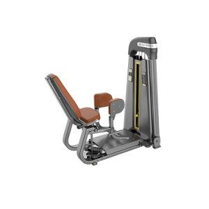 체조 장비 안 내전근 기계 또는 체조 안 허벅다리 내전근