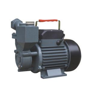 Fil de cuivre électrique domestique Self-Priming pompe à jet de pression de gavage