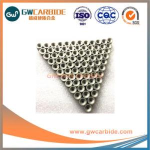 Le tungstène carbure cimenté Wire Drawing meurt