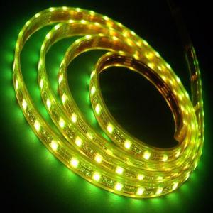 El panel LED de la tira del pixel de Digitaces RGB Ws2812b Digitaces