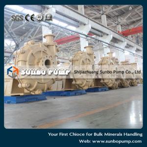 Китай горизонтальный центробежный насос навозной жижи/разработки насоса