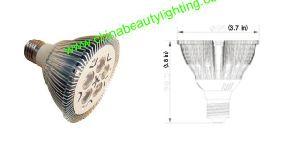 Input Power/5W LED PAR30 LED Bulb/LED Light