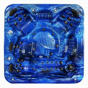 Haute Qualité bain à remous SPA Jacuzzi (S600)