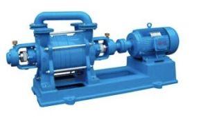 Elektrischer gefahrener Wasser-Ring/flüssige Ring-Vakuumpumpe