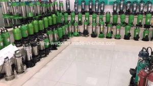 Qdx6-25 Dayuan-1.1f электрический погружение водяных насосов 220V/380V, 1.5inch 1.1kw (выход)