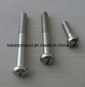 Slotted Countersunk Head Bolts (DIN 963) (MGS-SB002)