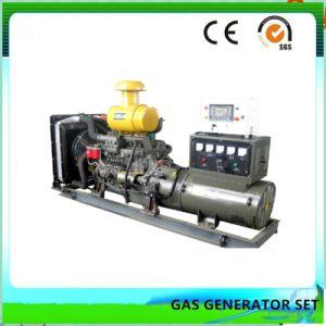 Nueva energía de biomasa y grupo electrógeno de Gas