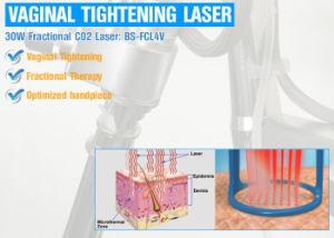 laser veterinario del CO2 del sistema chirurgico del laser del CO2 15W