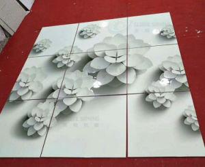 Macchina di rivestimento UV automatica lustrata 3D brillante globale della vernice delle mattonelle