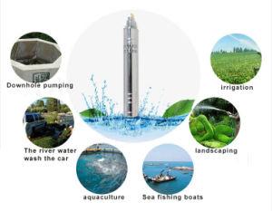 La pompe à eau solaire ; la pompe à eau submersibles; Irrigation la pompe à eau