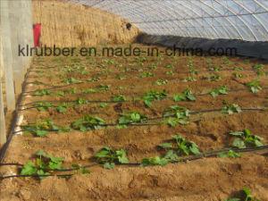El ahorro de agua de manguera de riego por goteo de plástico