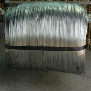 Steel galvanizzato Wire in Coil o in Wooden Drum