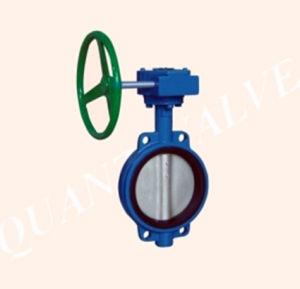 Ferro fundido ou aço inoxidável Válvula de Água com Caixa de Engrenagens