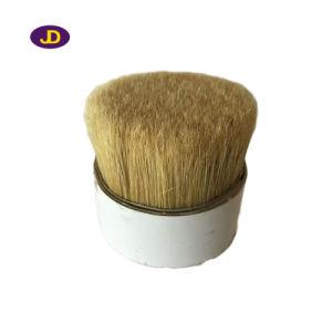 [شنغكينغ] غلى هلب خنزير شعر صاحب مصنع
